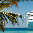 cruise ship&quot — Stock Photo