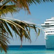 Cruise ship — Foto de Stock