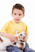 Young boy with cat — Stock Photo