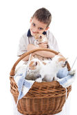 Little boy with cats — Stock Photo
