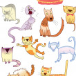 Set of eleven different cats — Stock Vector
