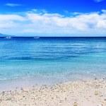 Tropical beach — Stock Photo #10164972