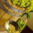 White wine — Stock Photo #8944576