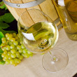 White wine — Stock Photo #9099811