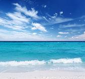 Beach — Stock Photo