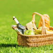Picnic — Stock Photo #10456648