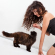 Girl playing with a kitten — Stock Photo