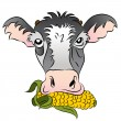 Corn Fed Cow — Stock Vector