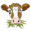 Grass Fed Cow — Stock Vector