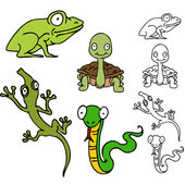 Reptile and Frog Set — Stock Vector