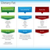 Dietary Fat Chart — Stock Vector