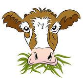 Vache de nourri à l'herbe — Vecteur