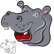 Hippopotamus — Stock Vector