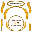 Stock Vector: Whole Grain Wheat Set