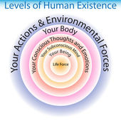 Levels of Human Existence Chart — Stock Vector