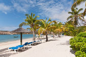 A Sunny Caribbean Beach with Sunloungers and Umbrellas — Stock Photo