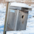 Nest Box in Winter — Stock Photo
