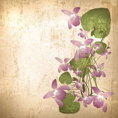 Vintage background with wild violet flowers — Stock Vector