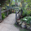Stone path walk bridge in garden. — Stock Photo