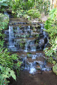 Petite chute d'eau du complexe tropical. — Photo