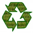 Stock Photo: Recycle sign contain green field on white background.