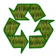 Recycle sign contain green field on white background. — Stock Photo #9687717