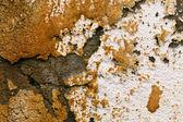 Peeled concrete wall — Stock Photo