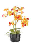 Artificial Flower Arrangement (Yellow Vanda in the wood pot) — Stock Photo