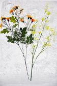 Flower in ice — Stock Photo