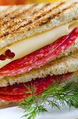 сэндвич — Стоковое фото