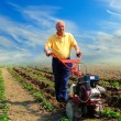 Stock Photo: Man works in the field with help of the motor cultivator