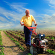 Stock Photo: Mworks in field with help of motor cultivator