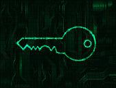 The key — Stock Vector