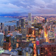 Chicago skyline panorama aerial view — Stock Photo #8577880