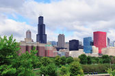Skyline di Chicago sul parco — Foto Stock