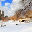 New York City Manhattan Central Park panorama in winter — Stock Photo #9086914