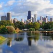 skyline de Chicago — Foto Stock #9087007