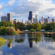 Skyline von Chicago — Stockfoto #9087007