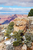 Grand Canyon panorama view in winter with snow — Stock Photo