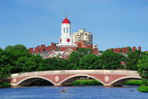 Harvard campus in Boston — Stock Photo