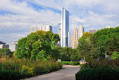 Chicago city downtown — Stock Photo