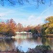 New York City Central Park in Autumn — Stock Photo #9422882