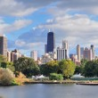 Chicago skyline — Stock Photo #9424032