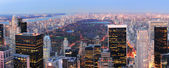 New York City Central Park panorama — Stock Photo