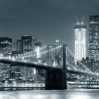 New York City Brooklyn Bridge — Stock Photo #9858763