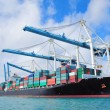 Cargo ship at Miami harbor — Stock Photo