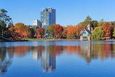 New York City Central Park Autumn — Stock Photo
