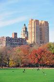 New York City Central Park at autumn — Stock Photo