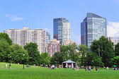 Boston Common public garden — Stock Photo
