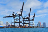 Porto de miami — Fotografia Stock